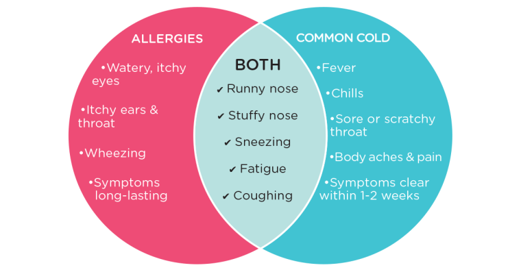 Blog Social Allergies Common Cold